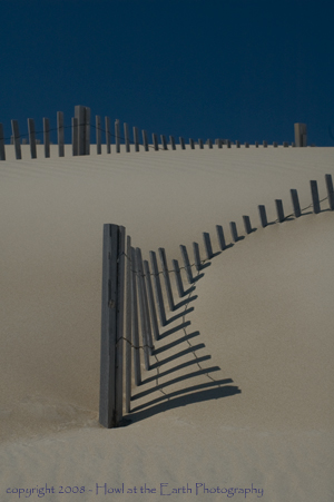 Dune Fences - Outer Banks, North Carolina 2008